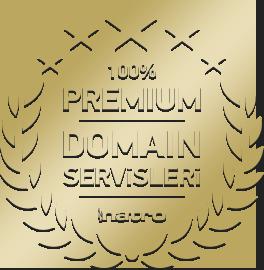 domain servisleri